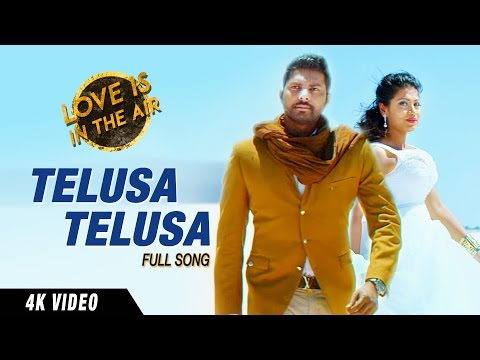 Telusa Telusa Full Video 4K UHD Song || Gopi Kakivai, Akhilla Kakivai || Sarrainodu