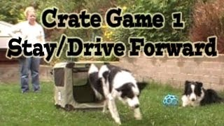 Crate Games 1: Stay/drive Forward - Dog Training