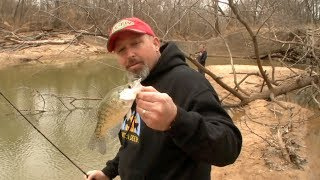 tips on crappie fishing from the bank