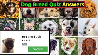 Dog Breed Quiz answers | Can you pass this dog breed quiz answers | Quizdiva