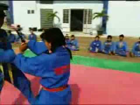 Introducing Vietnamese martial art ( Vovinam) to the world