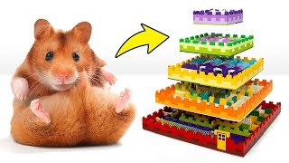 How To Build 5-Level Lego Maze For Your Pet Hamster! 🐹🧱🎁
