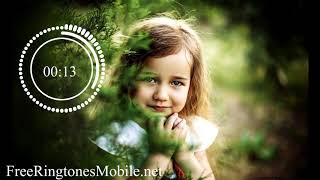 O Saathi Baaghi 2 Ringtone Mp3 download (Link)