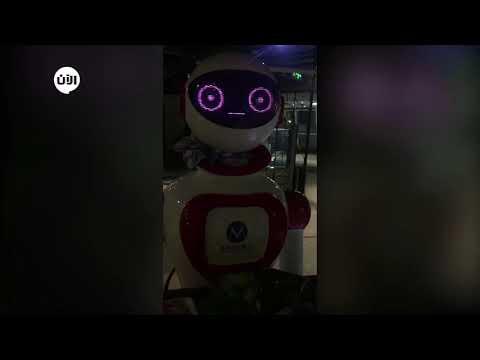 شاهد روبوت في خدمة رواد احد المطاعم في دبي  - نشر قبل 2 ساعة