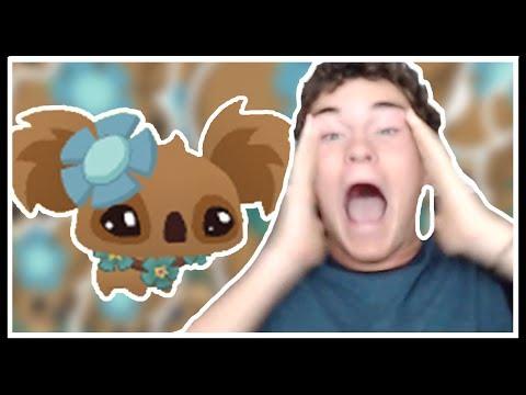 The Spinnyboi Pet is REAL | Animal Jam