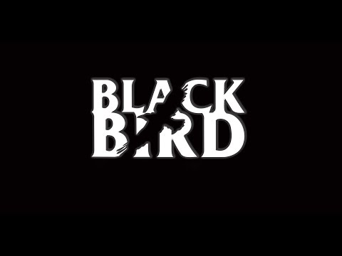 Black Bird Band - Hey Jude