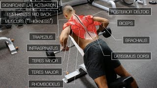 The Best Science-Based Back Workout (TARGET EVERY MUSCLE!) thumbnail