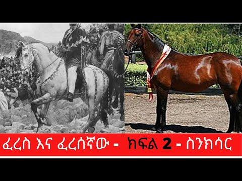 Ethiopia Sheger FM- Sinkisar – Documentary – ፈረስ እና ፈረሰኛው – ክፍል 2 – ስንክሳር