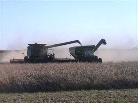 KLEIN FARMS LIBERTY, IN HARVESTING SOYBEANS OCT 11, 2013