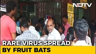 Nipah Virus Claims 10 Lives In Kerala, 2 Critical