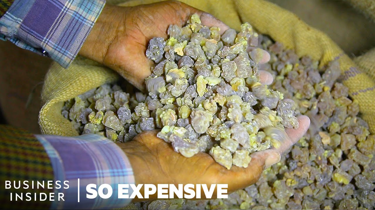 Why Frankincense And Myrrh Are So Expensive | So Expensive