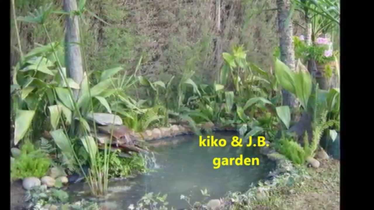 Estanques caseros de agua para peces en el jard - Estanques en el jardin ...
