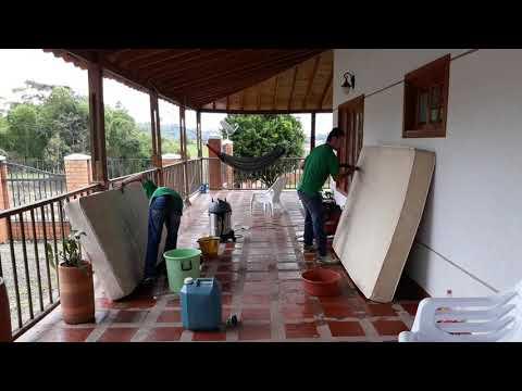 lavado de muebles en pereira  3272075