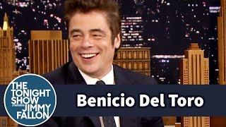 Benicio Del Toro Left Las Vegas with Two Tortoises
