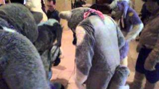 FC 2011 - Stomping Time