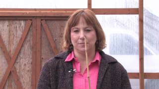 Gardening: Caring for Plants : How to Dry Bamboo