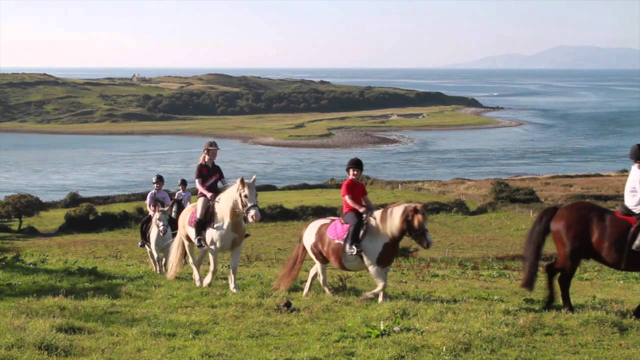 Island View Riding Stables Family Run Horse Farm Youtube