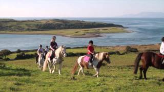 Island View Riding Stables Family Run Horse Farm