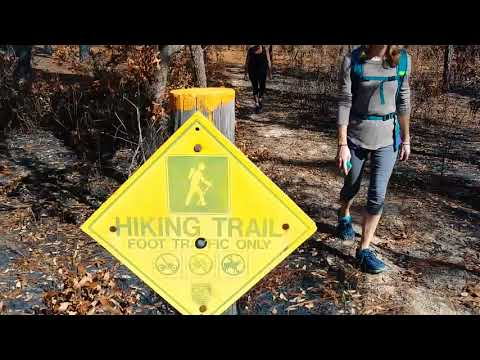 Mutual mines - citrus tract withlacoochee state forest