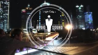 Syn Cole Miami 82 Kygo Remix Hq