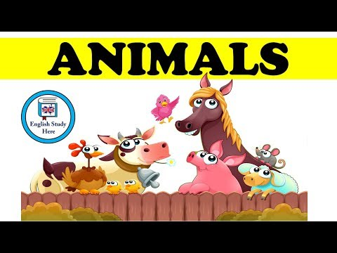 Farm Animal Names Spelling for Kids from YouTube · Duration:  2 minutes 43 seconds