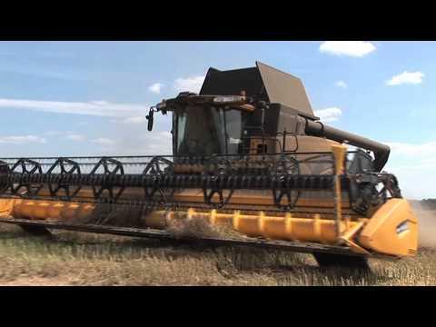 Kids guide to Farming Barley