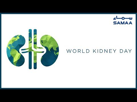 World Kidney Day | SAMAA TV | 14 March 2019