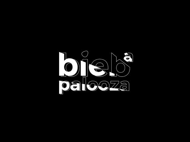 Bieb-a-palooza - Interview Aat Vos