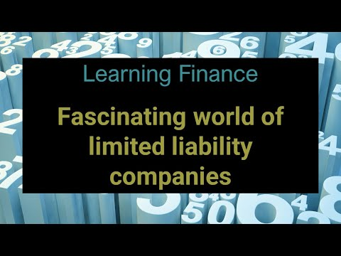 Learning Finance 003 Company fundamentals
