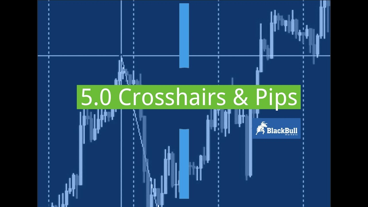 5 0 Crosshairs And Pips On Mt4 Blackbull Markets Youtube