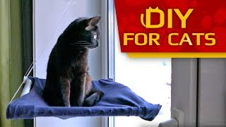 DIY - How to make Window Bed for Cat (Easy & Fast)🐱