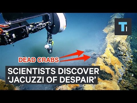 Scientists discovered underwater lake of death