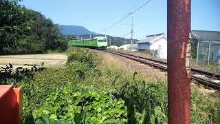 103系和歌山線団体! 大和二見〜隅田駅間にて 警笛あり