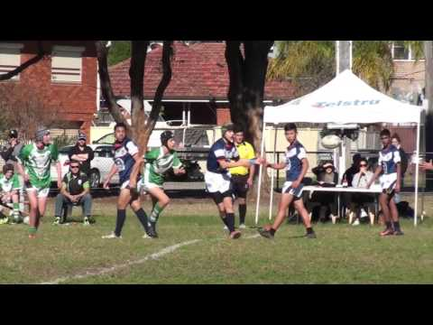 Kingsgrove Colts vs Gymea Gorillas at Beverly Hills Park