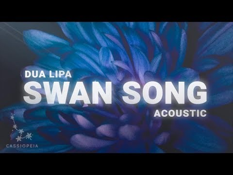 Dua Lipa - Swan Song (Acoustic) Lyrics Mp3