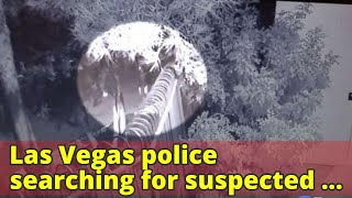 Las Vegas police searching for suspected serial shooter targeting the homeless, killing 2