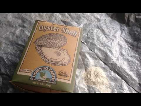 oyster-she'll-flour.-why-it-is-important-in-a-plants-growth-and-soil-ph-levels