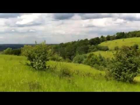 Walking up and around Box Hill - Surrey UK