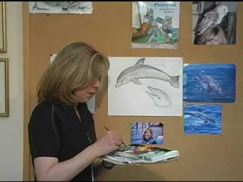 How To Draw Dolphin By Jan Brett