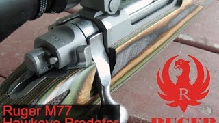 Ruger M77 Hawkeye Predator Review