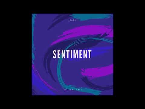 sash. - Sentiment (Official audio)