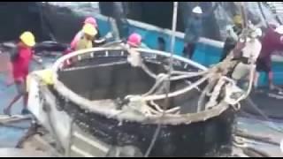 Buena pesca