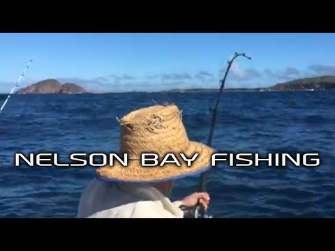 Nelson Bay Fishing
