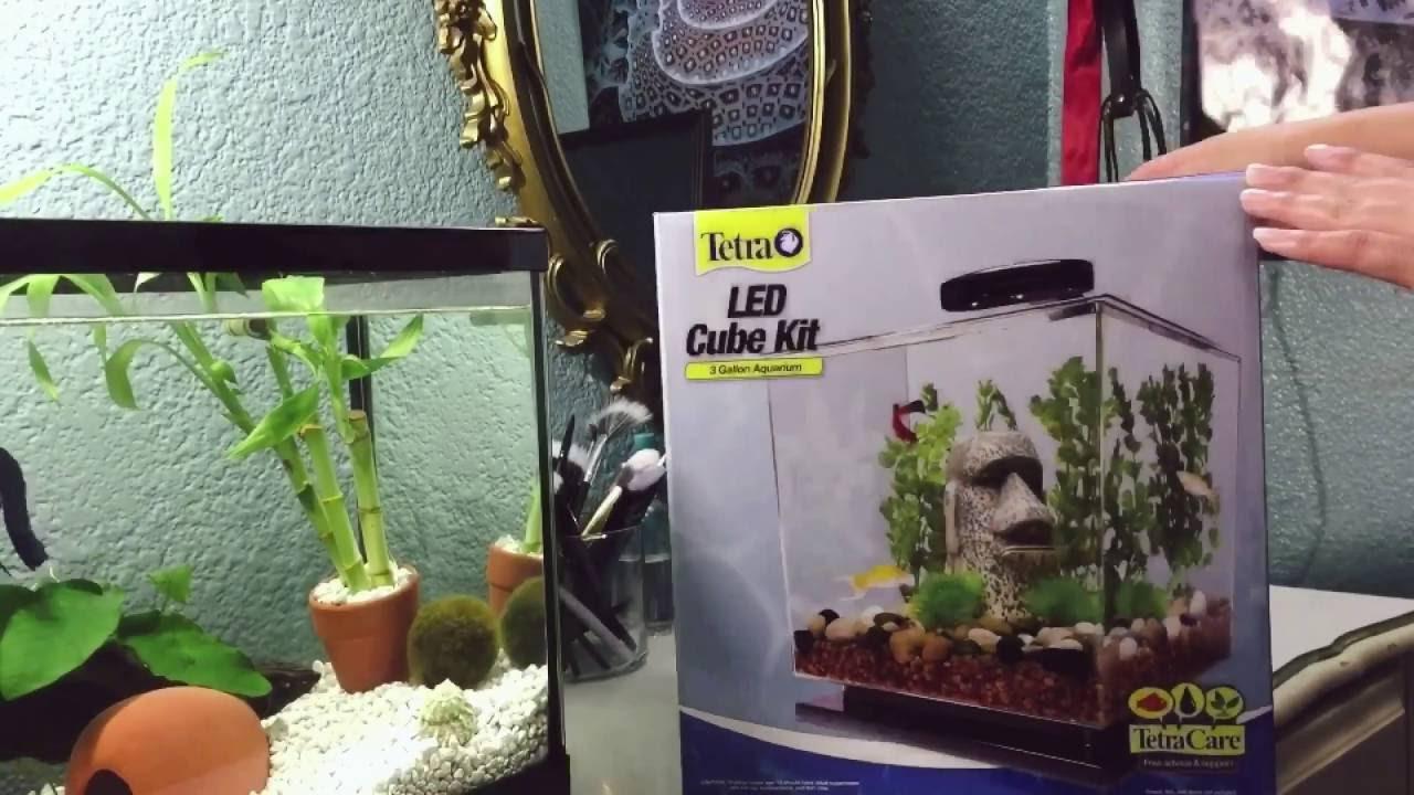 unboxing tetra 3 gallon aquarium cube setup for betta youtube