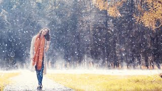 Rival x Cadmium - Seasons (feat. Harley Bird) - Chill Lounge Cafe Featured Artist Track