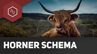 Horner-Schema erklärt - Nullstellen leicht gemacht