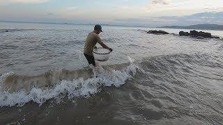 阿雄在大浪中放下一大排陷阱,隔天海货抓不少,居然还逮住条鲨鱼