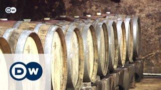 سنة جيدة لمنتجي النبيذ في وسط اوروبا | صنع في ألمانيا