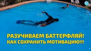 Плавание Баттерфляем: как отточить технику гребка и при этом сохранить силы и мотивацию к обучению!!