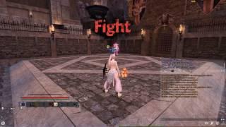 Vindictus PVP Arena Fiona vs Karok